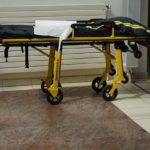 アナフィラキシーを原因とした入院数と死亡数の変化: 横断研究