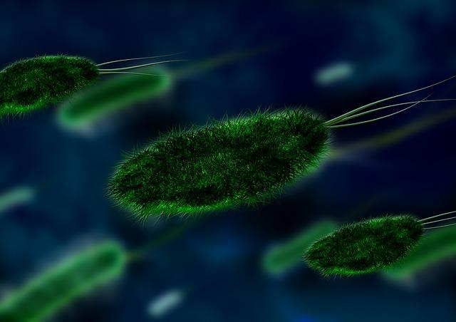 細菌成分を飲むことでアトピー性皮膚炎を予防できるかもしれない: ランダム化比較試験