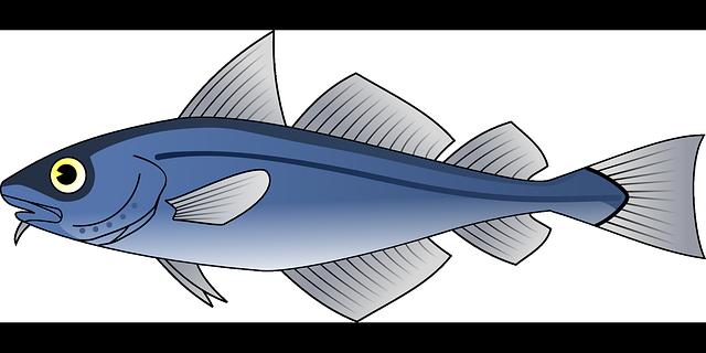魚の経口免疫療法は可能か?: 症例報告
