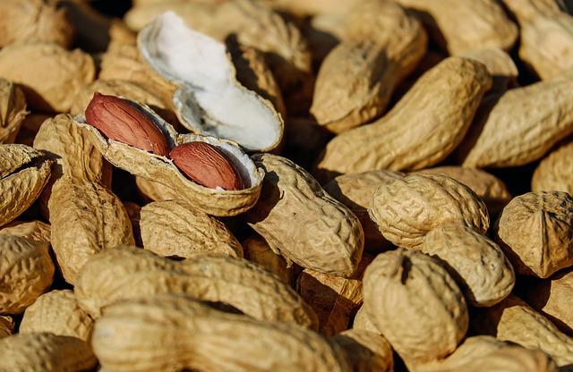 ハウスダスト中のピーナッツが、皮膚を通してピーナッツアレルギーのリスクになる