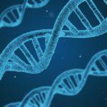 臍帯血中のフィラグリン遺伝子変異はアトピー性皮膚炎発症を予測する