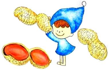 微量のピーナッツの継続した摂取でも、免疫寛容が誘導されるかもしれない
