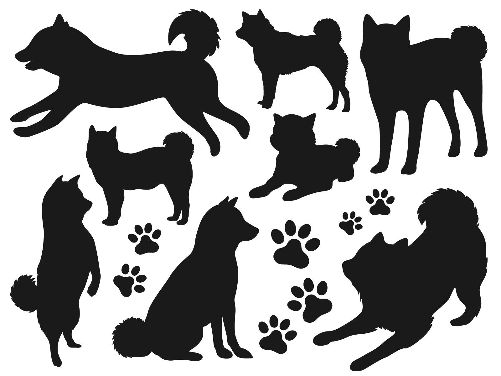 「低アレルゲン性」の犬種があるというのは本当か?