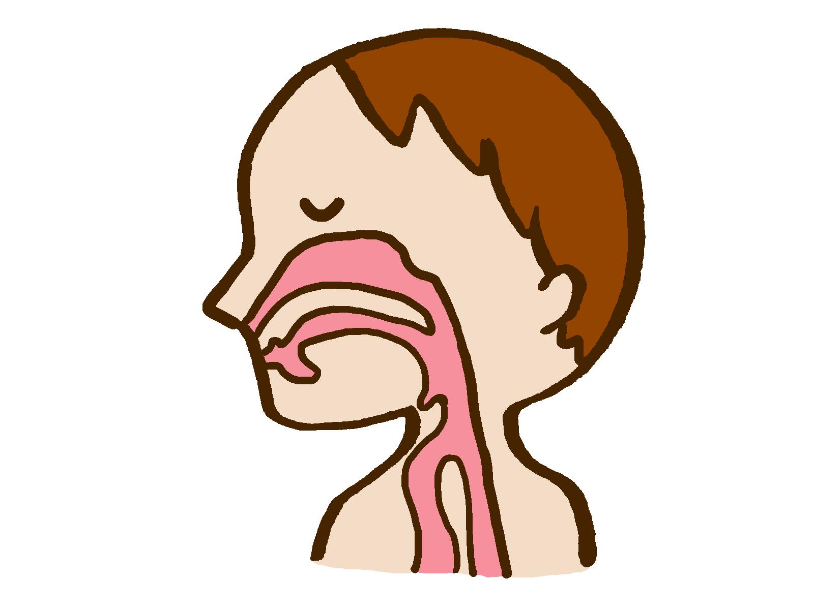 高張食塩水による鼻うがいは、生理食塩水による鼻うがいよりアレルギー性鼻炎症状を改善する