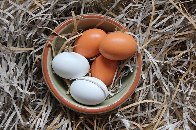 卵の経口免疫療法、週1回増量と毎日増量のどちらがより安全か?