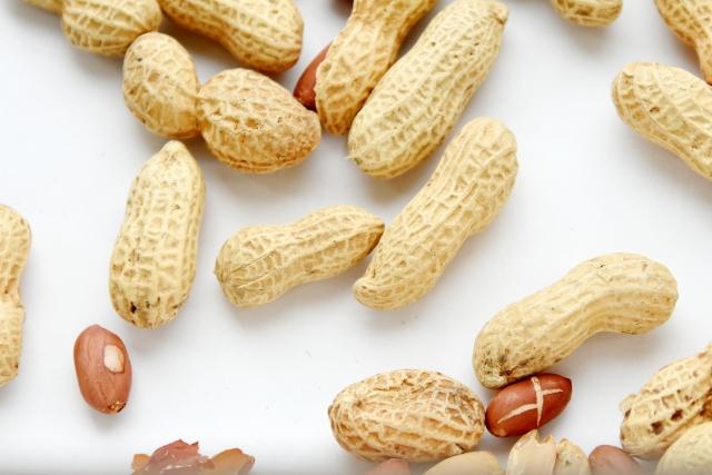 抗IL-33抗体 エトキマブは、ピーナッツアレルギーを効率的に改善させるかもしれない
