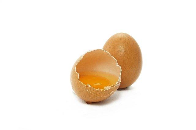 鳥の羽と卵黄中の蛋白質αリベチンが交差して起こる『bird-egg症候群』とは