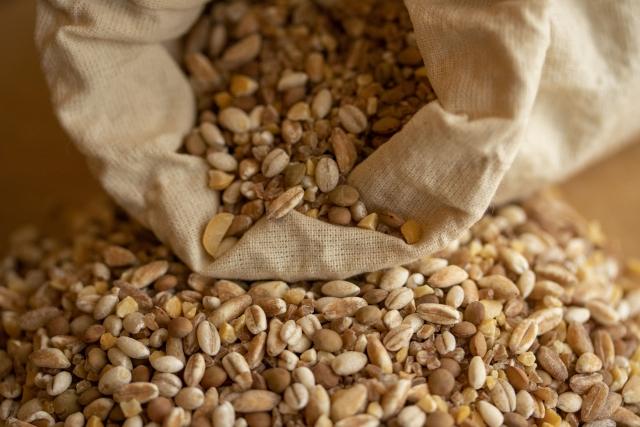 小麦アレルギーがある児は、『古代小麦』に対しても同様にアレルギー反応を起こす可能性が高い