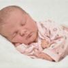 母乳中IL-1βは子どもの湿疹発症を減らすかもしれない: 出生コホート試験