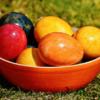 各種鶏卵コンポーネントと、将来の卵耐性に関連があるか: 後ろ向きコホート研究