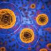 微生物群は喘息予防の切り札になるかもしれない: レビュー