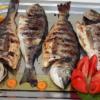 妊娠中の魚油摂取は1歳でのアレルギー疾患を予防するが3歳では有意差が消失する: ラ