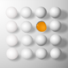 加水分解卵による卵経口免疫療法: ランダム化比較試験
